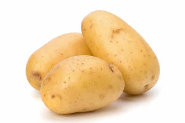 Kartoffeln gross und festkochend